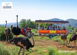 مسافرت به آفریقای جنوبی