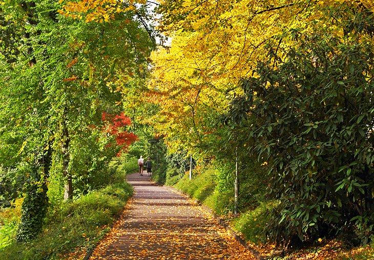 طبیعت گردی در دوسلدورف