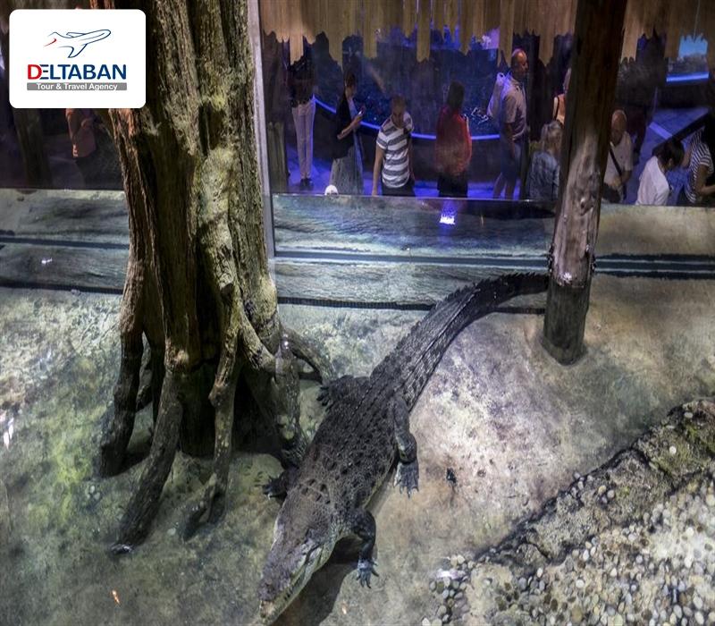 باغ وحش زیر آب و آکواریومدبی