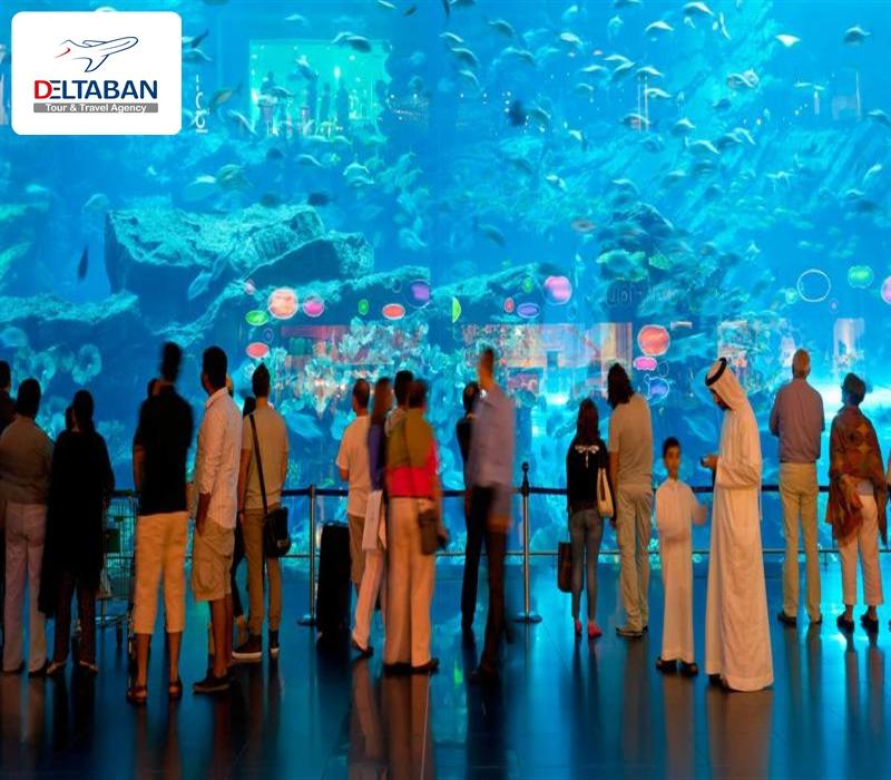 باغ وحش زیر آب دبی