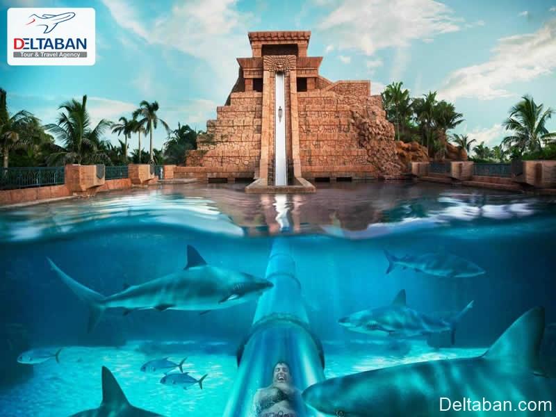 پارک های آبی دبی, بررسی دقیق و کامل پارک های آبی دبی