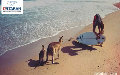 آشنایی با جاذبه های گردشگری استرالیا