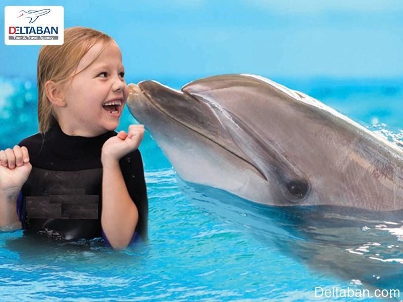 آشنایی با دلفیناریوم دبی زیباترین دلفیناریوم جهان