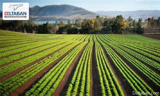 فعالیت های کشاورزی از جمله فعالیت های اقتصادی اتاوا