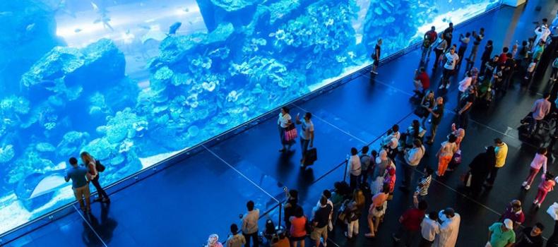 دنیای زیر آب در دبی