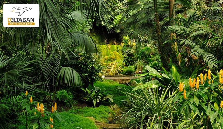 باغ گیاه شناسی پالمن
