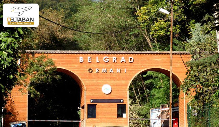 نمایی از ورودی جنگل بلگراد