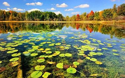 دریاچه زیبا در رشت