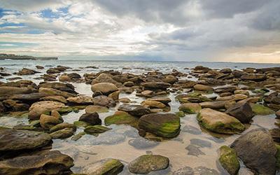 نمایی از ساحل سیدنی