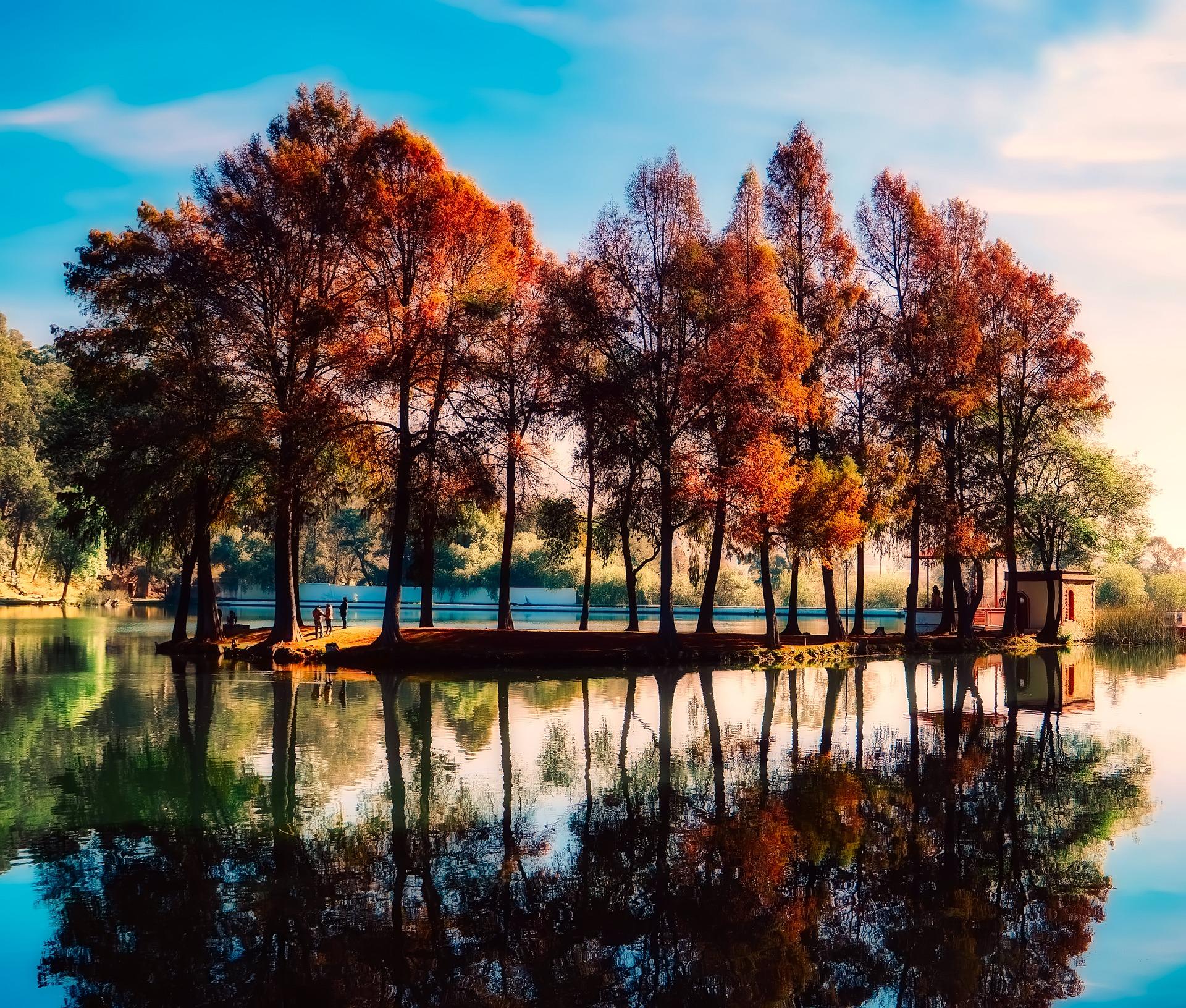 نمایی از طبیعت زیبا در چین