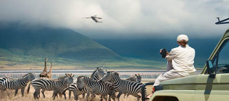 تصویری از طبیعت زیبا کنیا