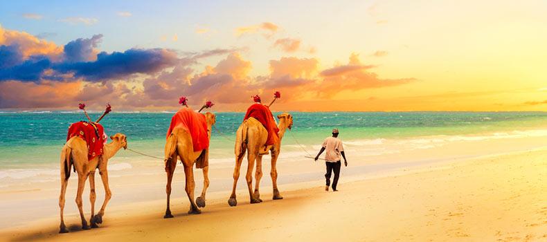 تصویری زیبا از ساحل کنیا