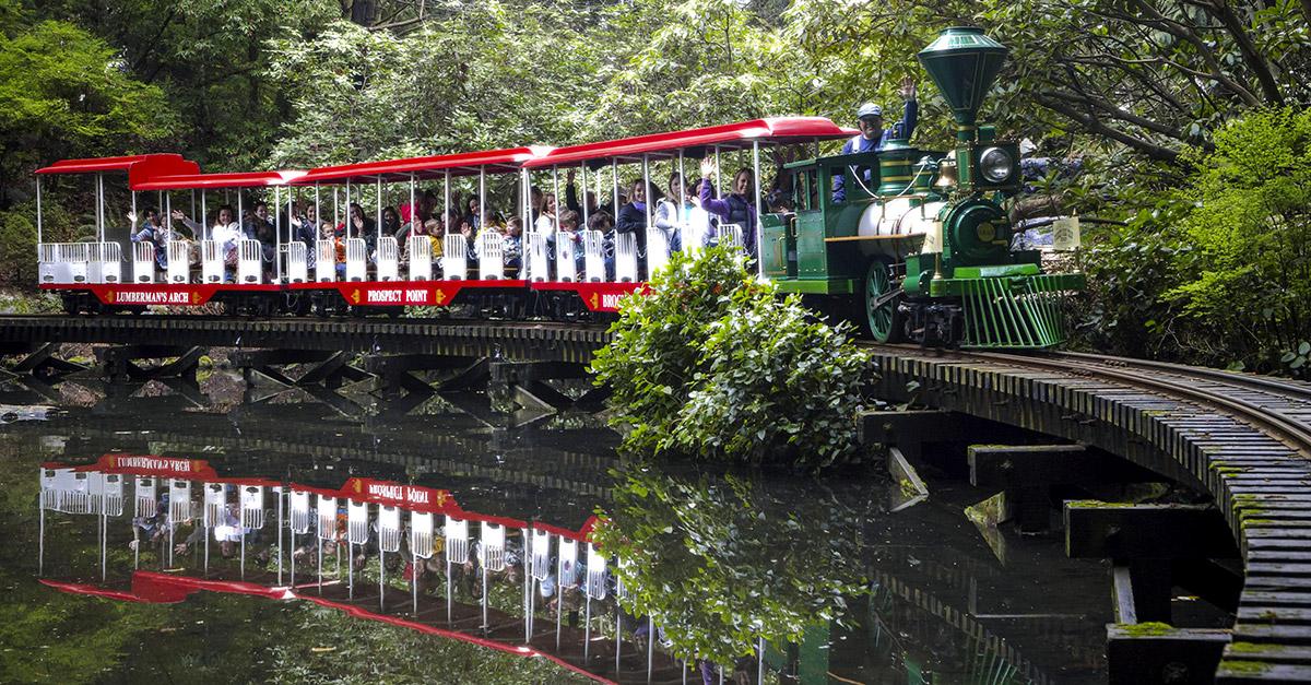 قطار سواری در دور پارک