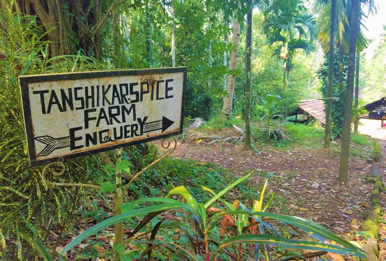 مزرعهی ادویهجات تانشیکار جاذبههای گردشگری گوا